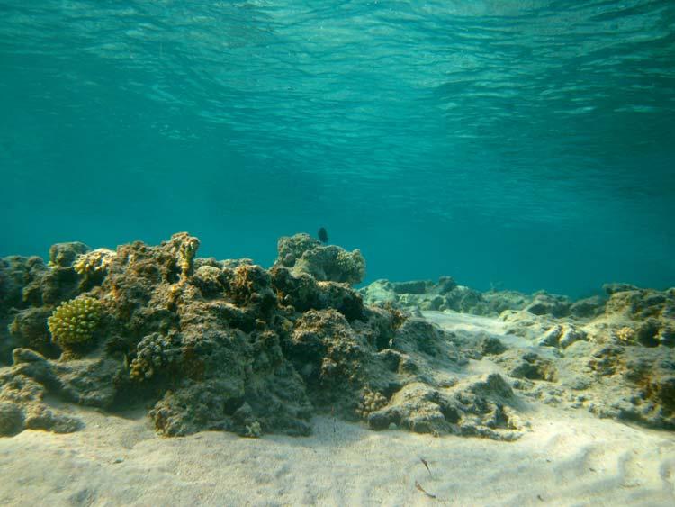 Lagunen ved Ras Mamlah