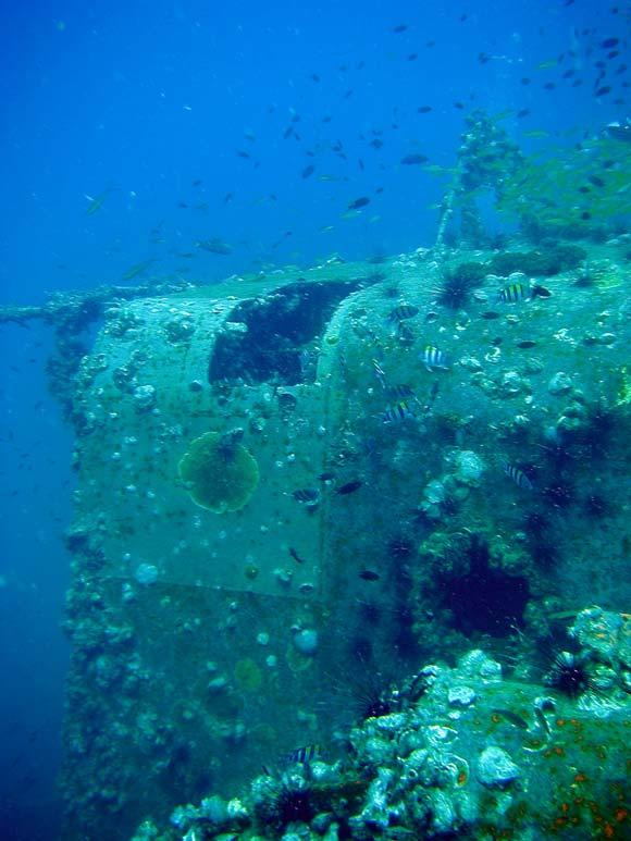 Sugar Ship Wreck på Perhentian Islands